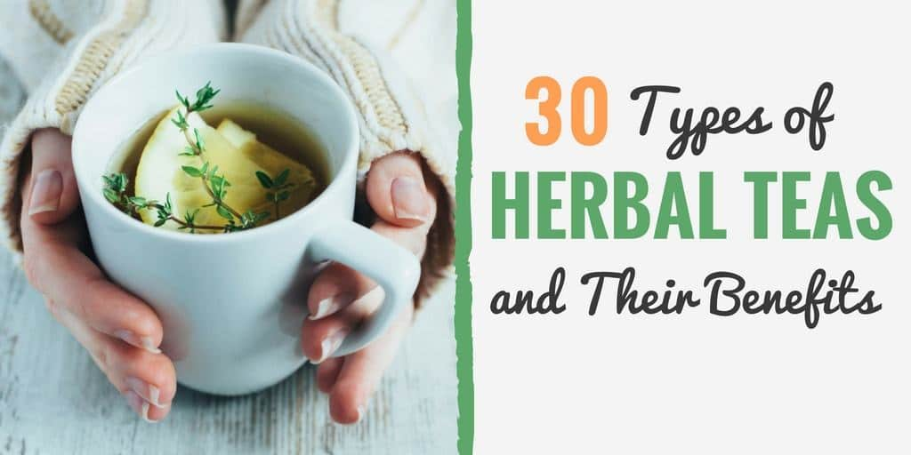30 Types of Herbal Teas (and Their Amazing Health Benefits)